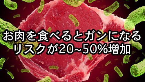 vegworld-niku-gan-home-2