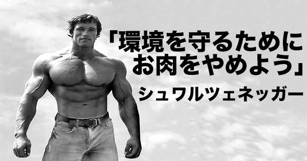 Schwarzenegger-niku-yameyo-kiji